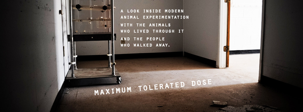 Maximum Tolerated Dose