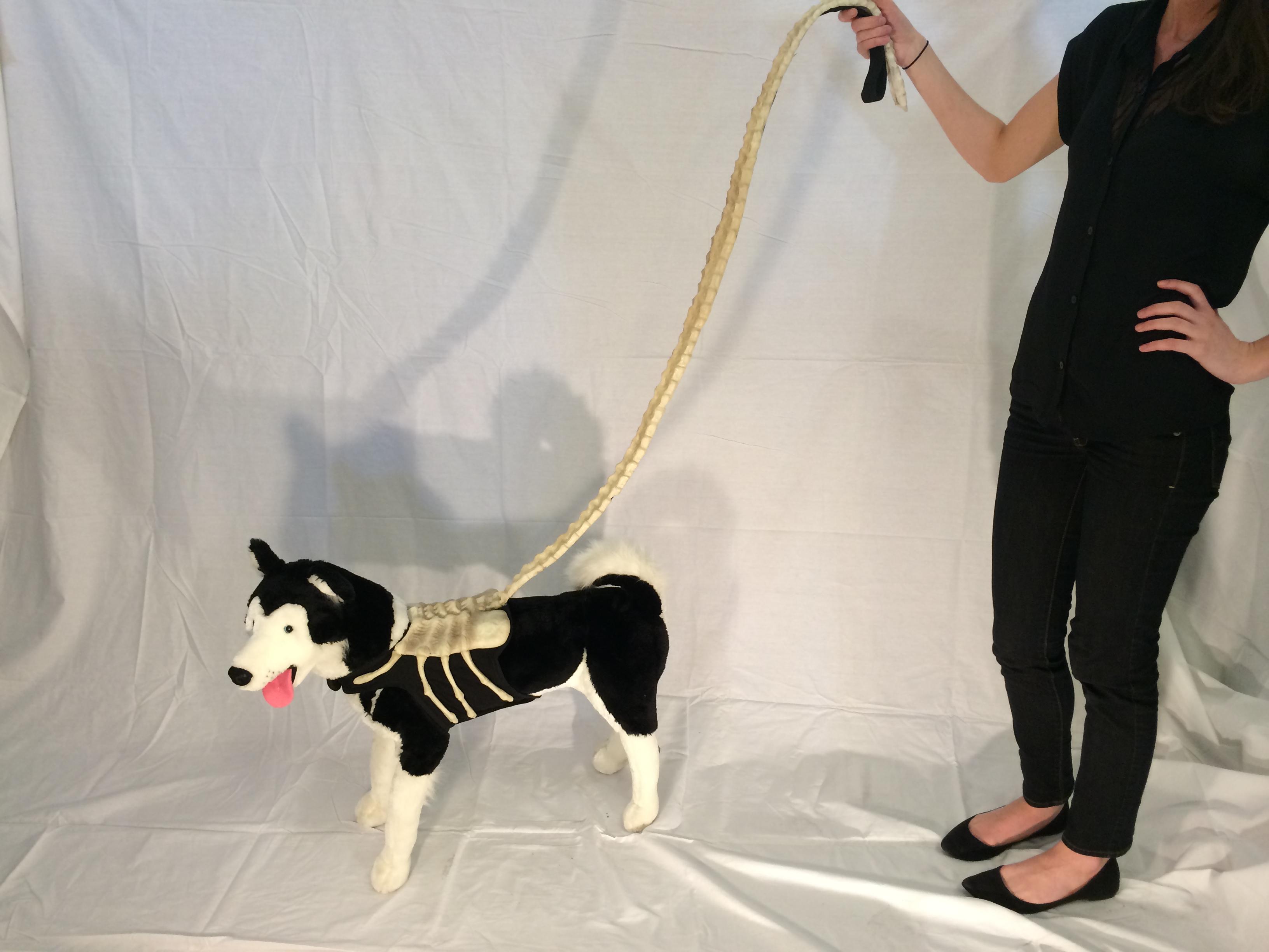 Xenomorph Dog Costume Alien Facehugger Dog L...