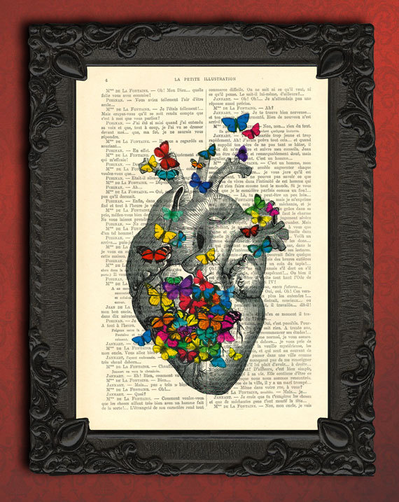 anatomical heart with butterflies, butterfly art - vintage human ...
