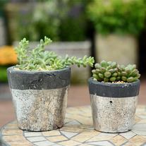 Rustic Metallic Planter Pot