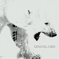 Parallel Lines - Black Fur /// White Cathedral
