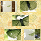 Green-moth-listing-3_small
