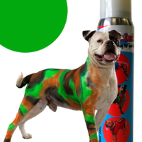 Pet Paint - Green