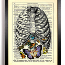 Image of A Belly full Of Butterflies, Vintage Dictionary Print, 8 x 10