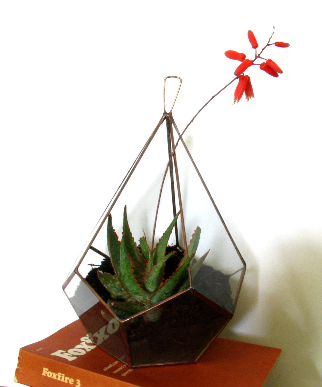 Large Succulent Planter / Large Terrarium / Hanging Planter / Glass ...