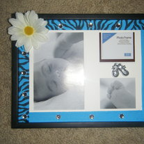 Blue zebra daisy and gem photo frame