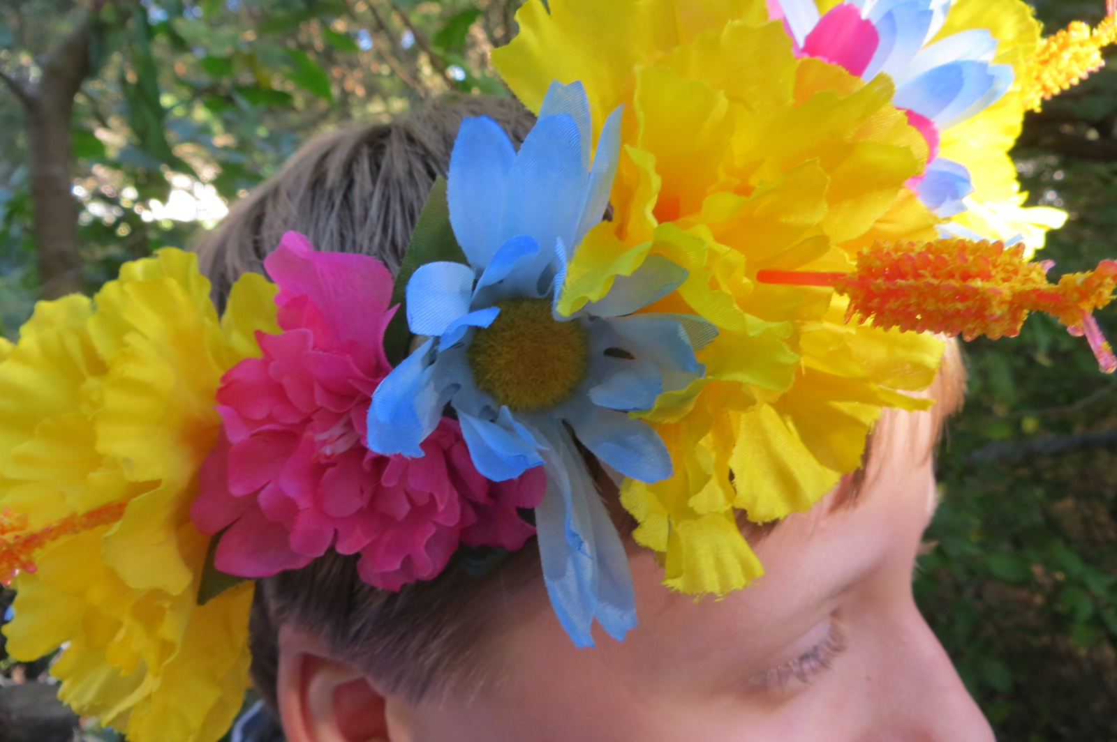 Pansexual colored flowers full circle crown the notebook projects pansexual colored flowers full circle crown mightylinksfo