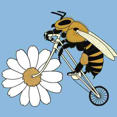 Bee riding bike with flower wheel 5x7 print