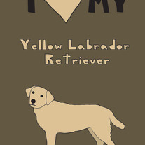 Yellow Labrador Retriever, 5x7 print