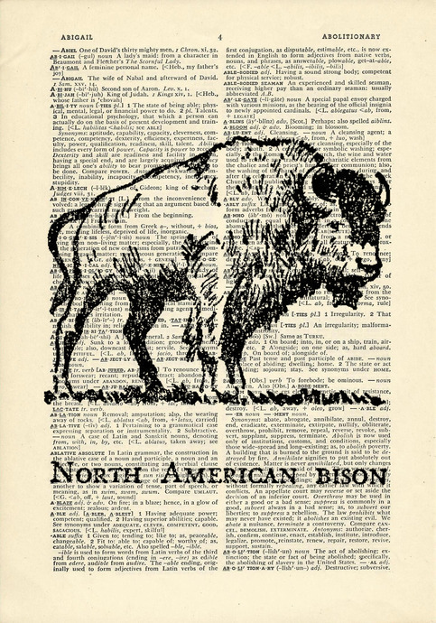 american bison research paper The dramatic near extinction, and subsequent recovery and restoration, of the american bison during the late nineteenth century is examined using a property rights.