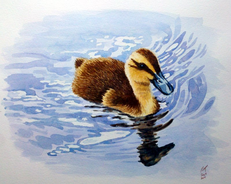 Duckling_original