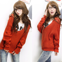 Jersey Capucha / Hooded Sweater DW452