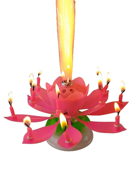 Pink Lotus Flower Birthday Exciting Candle R 14