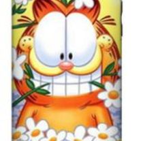 Hard Case Cover for Apple iphone 3G/S, Garfield Cat #1 !!!