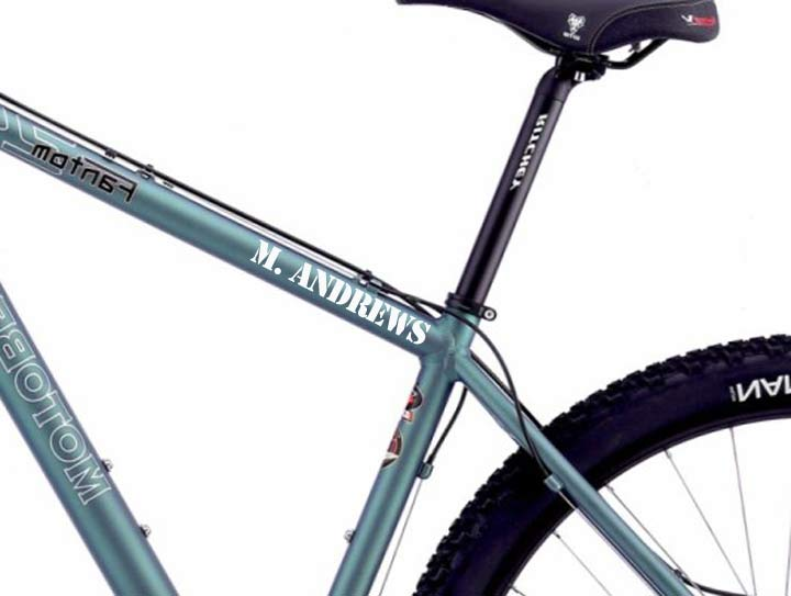 Bike Frame Name Die Cut Decal Set of 4 Custom Made Personalized ...