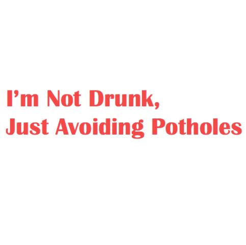 I M Not Drunk Just Avoiding Potholes 183 Vinyl Guru