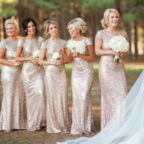 Champagne Bridesmaids Dresses with Sleeves