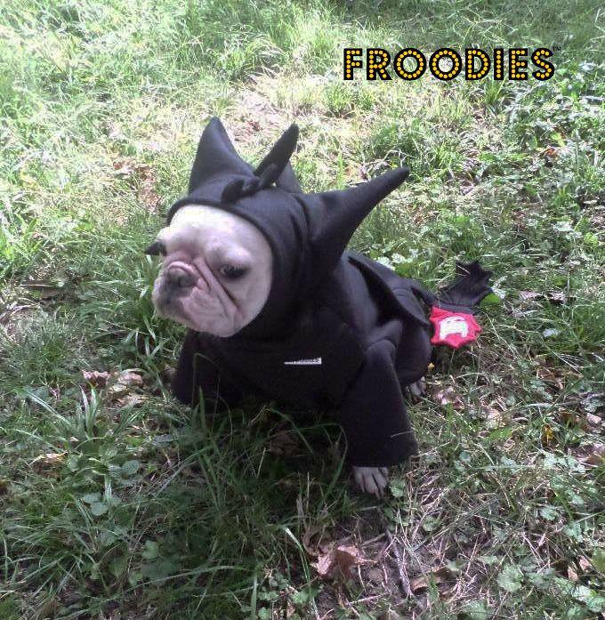Dragon6 original & French Bulldog Boston Terrier Pug Dog Froodies Hoodies Halloween ...
