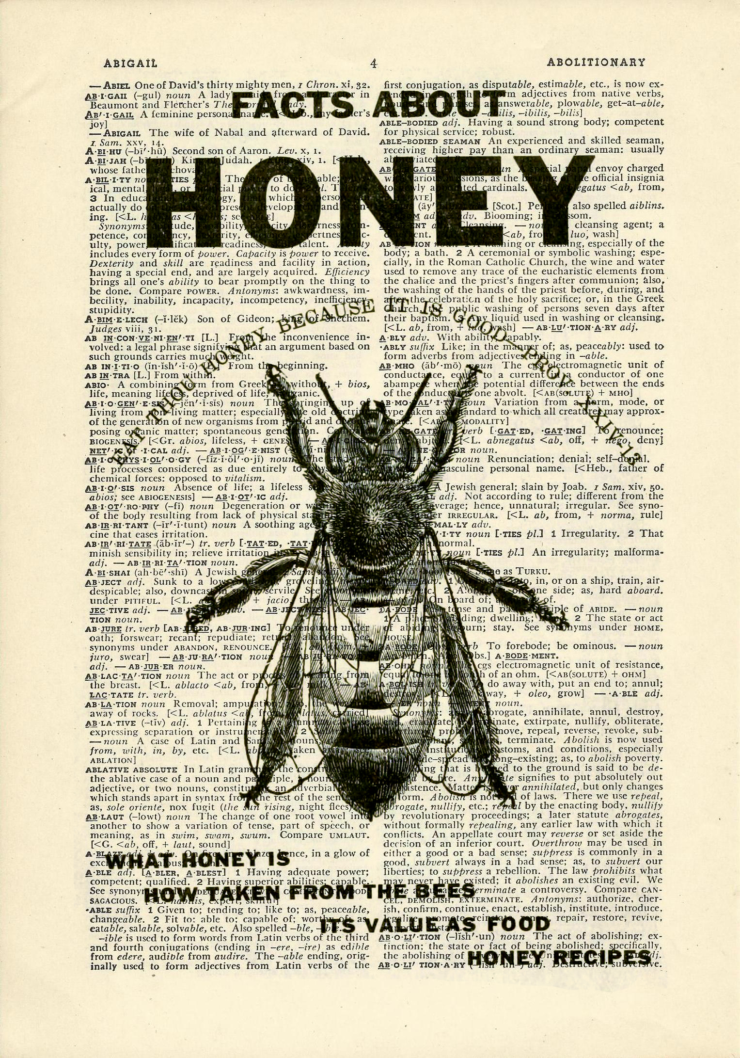 Honey Bee Dictionary Art Vintage Flying Insects On Upcycled Vintage