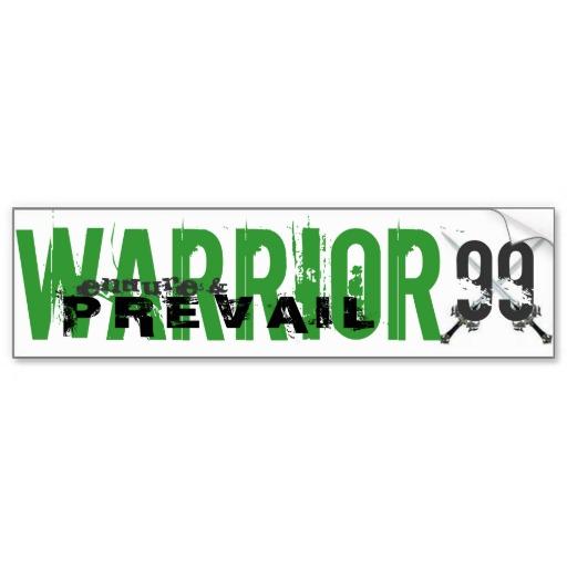Darts warrior 99 bumper sticker