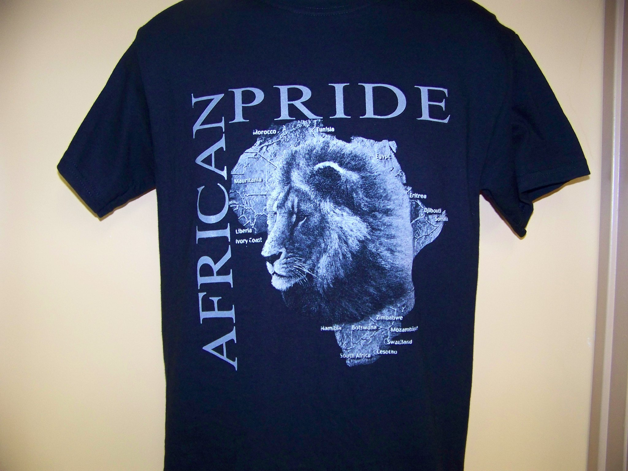 Storenvy coupon: African American History - African Pride with Lion Black T-Shirt