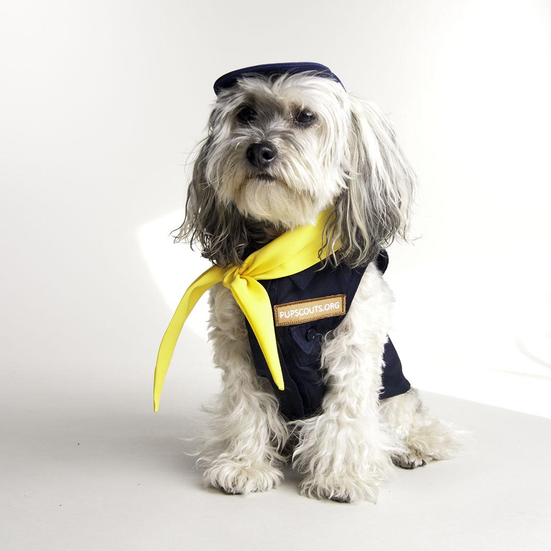 Pupscout Boy Sleeveless Uniform By Toni Mari