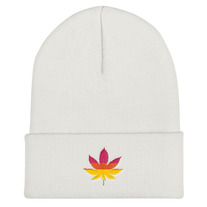 fbf6353747c3e Envy This Collect. Rainbow MJ Cuffed Beanie · ClothedByLAW  20.00. 0. Envy  This Collect. NFL Washington Redskins  BIG SCREEN  Beanie Hat