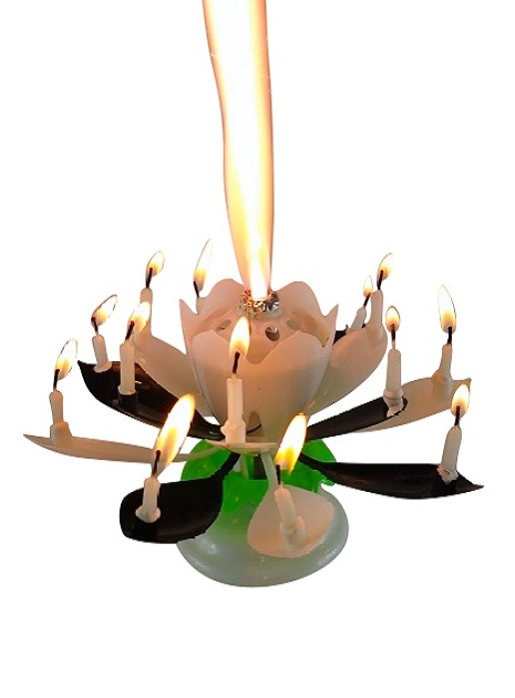 Black White Lotus Flower Birthday Exciting Candle R