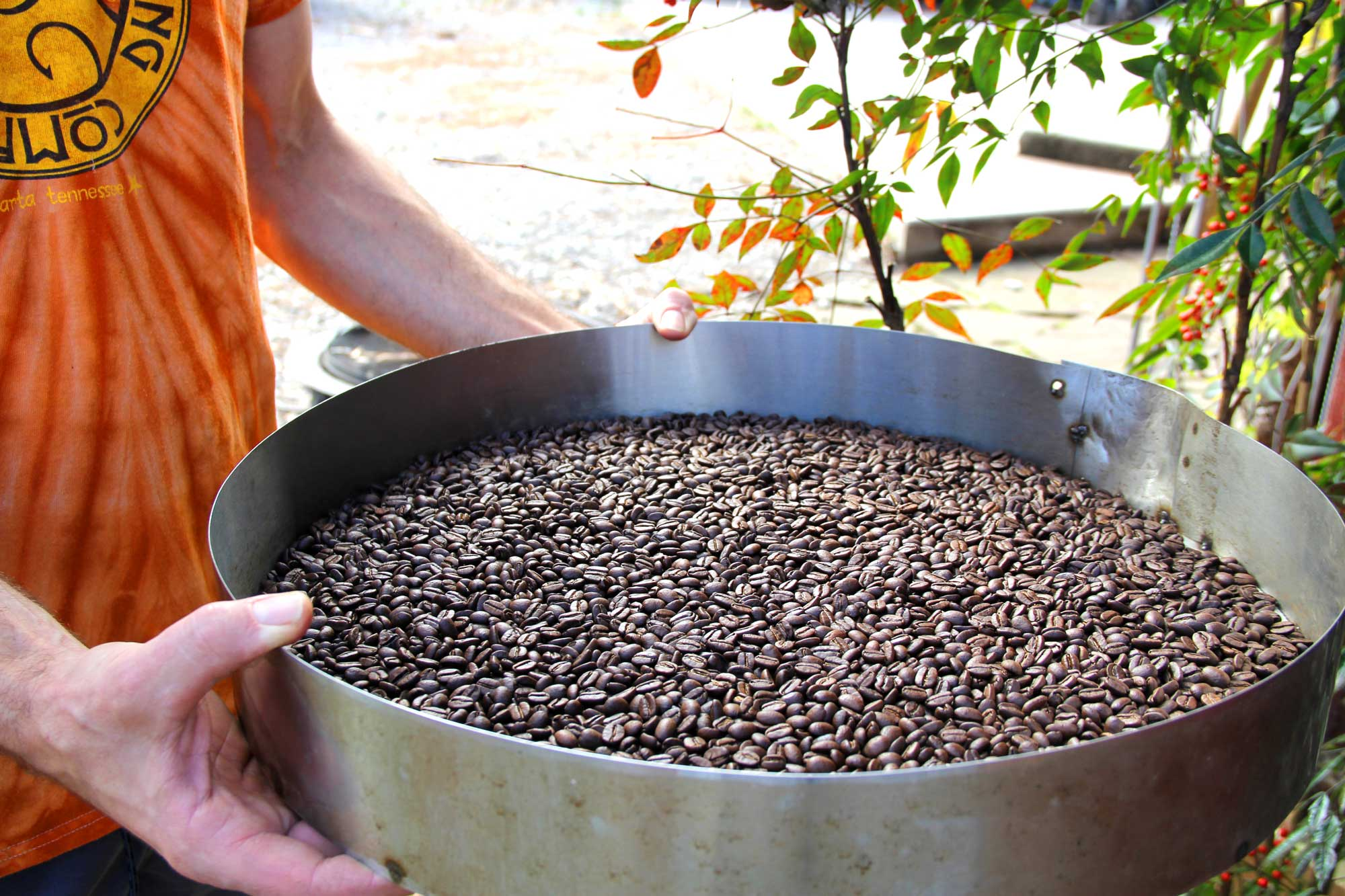 Coffee Beans Online >> Fresh Fire Roasted Calfkiller Coffee Beans From Calfkiller Brewing Company